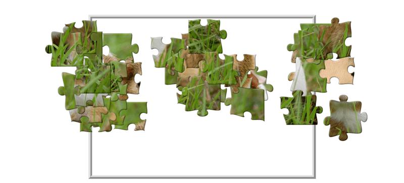 Classic Puzzle ingame screenshot